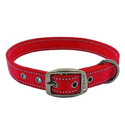 Max and Neo MAX Reflective Metal Buckle Dog Collar