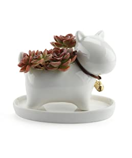 T4U Lovely Puppy Dog Design Ceramic Succulent Plant Pot/Cactus Flower Pots Container Porcelain Holder Planter Decoration with Golden Bell and Tray - Pack of 1