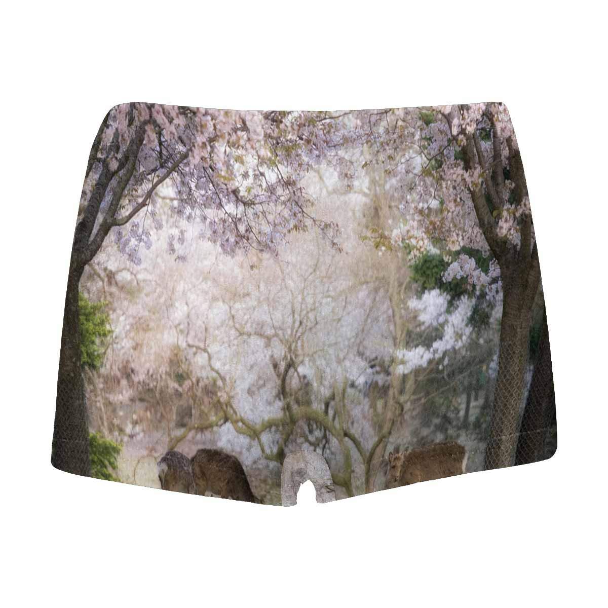 5T-2XL INTERESTPRINT Boys Boxer Brief Underwear