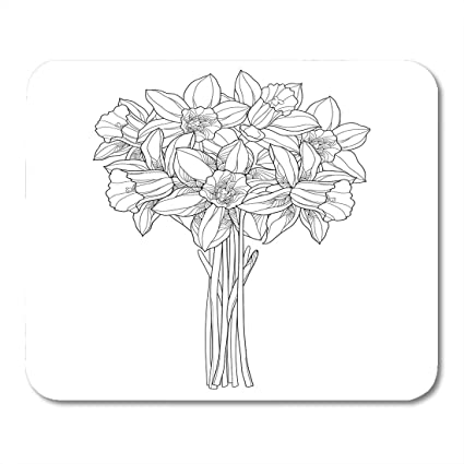 Amazon Com Emvency Mouse Pads Bouquet With Outline Narcissus