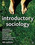 img - for Introductory Sociology: Fourth Edition book / textbook / text book