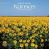 Kansas, Wild & Scenic 2019 7 x 7 Inch Monthly Mini Wall Calendar, USA United States of America Midwest State Nature