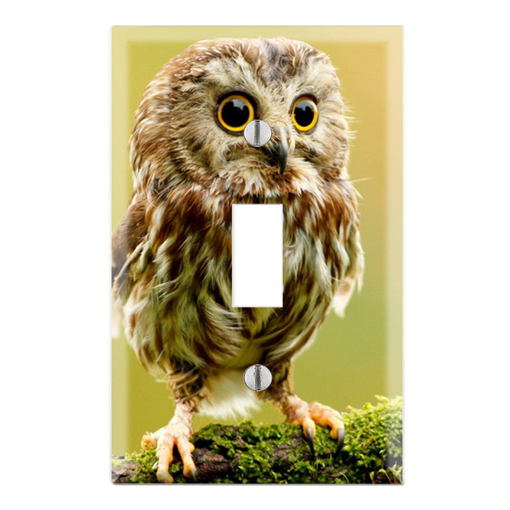 Cute Baby Owl Decorative Duplex Outlet Wall Plate Cover - - Amazon.com
