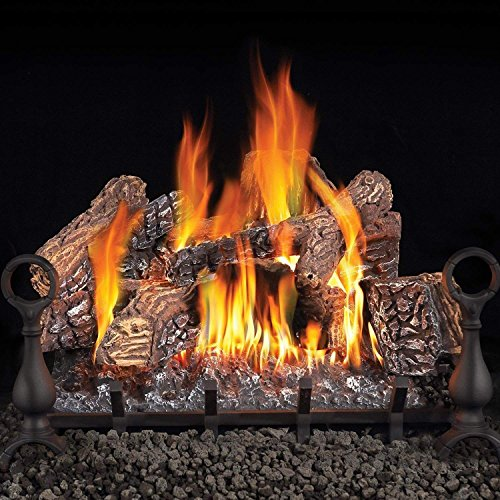 Napoleon GL24NE 24 Inch Vented Gas Log Set for Natural Gas