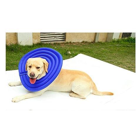 ZZQ Anillo de natación de Verano para Mascotas, Ajustable, Traje ...