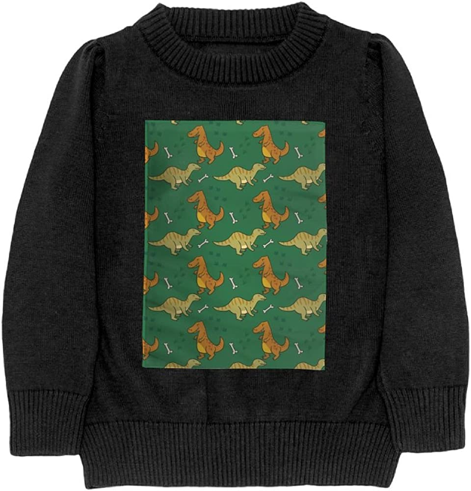 DTMN7 colorful Cute Dinosaur Teens Sweater Long Sleeves Crew-Neck Youth Athletic Casual Tee Junior Boys