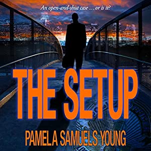 The Setup Audiobook