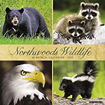 Northwoods Wildlife 2019 Wall Calendar