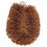 Redecker Vegetable Brush, Coconut Fiber, Set of 2, 4'' x 3'', Natural Bristles Effectively Clean Soft and Tough-Skinned Fruits and Veggies, Wire Hanging Loop for Storage