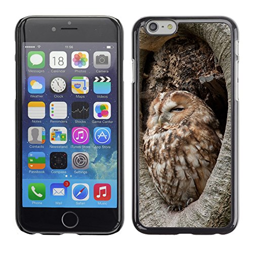 """Premio Sottile Slim Cassa Custodia Case Cover Shell // V00002203 Chouette hulotte // Apple iPhone 6 6S 6G PLUS 5.5"""""""