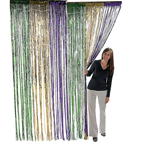 Fun Express Metallic Mardi Gras Fringe Curtains (1 -