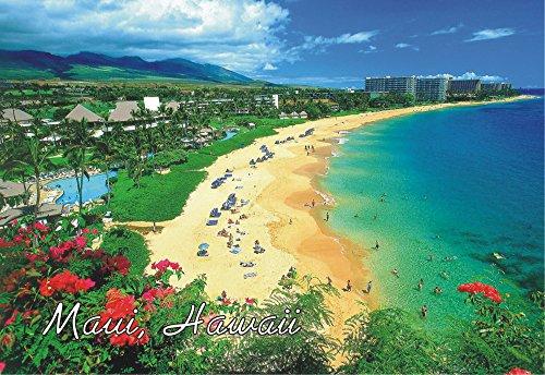 - Maui Hawaii, Beach, Hawaiian Islands, HI, US Souvenir Magnet 2 x 3 Photo Fridge Magnet