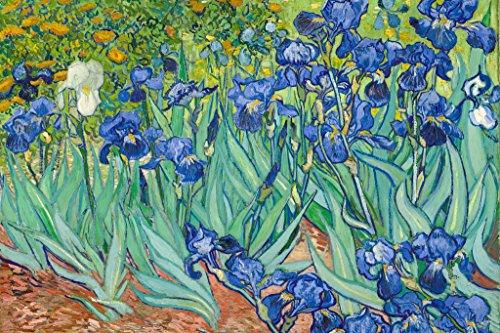 Vincent Van Gogh Irises 1890 Flowers Art Print Poster 36x24