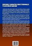 Derechos y Garantias Constitucionales y La Accion de Amparo. Tomo X. Coleccion Tratado de Derecho Constitucional (Spanish Edition)