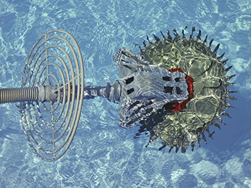 (Underwater Robots That Hover and Glide )