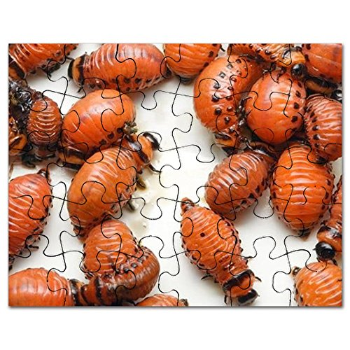 cafepress-colorado-potato-beetle-larvas-on-white-back-jigsaw-puzzle-30-pcs