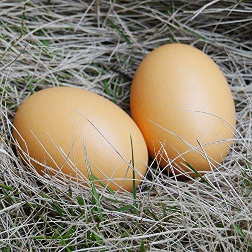 Wooden Egg - 6