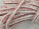 3/4'' X 100' 12 carrier, 24-strand Arborist Bull Rope, White/Red