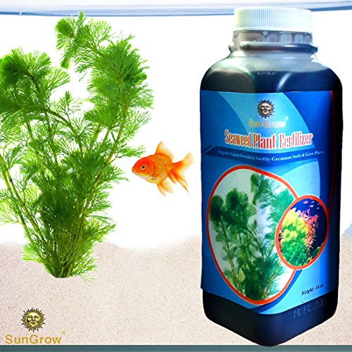 Liquid Seaweed Plant Fertilizer for Aquariums --- 16oz Organic Ready to use Formula - Growing Aid for Healthy & Happy Aquatic Plants - Contains over 70 Essential Vitamins, Minerals & Micronutrients (Seaweed Healthy)