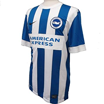 Nike Brighton   Hove Albion FC Home Shirt 2015-2016 Medium  Amazon.co.uk   Sports   Outdoors 7ae0d8c89