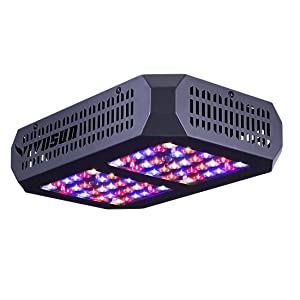 VIVOSUN 300W LED Grow Light Full Spectrum for Hydroponic Indoor Plants Growing Veg and Flowering