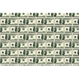 Amazon Com The Million Dollar Poster Money Cash 24 Quot X36