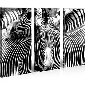 Zebra * Cuadro en Lienzo – Enmarcación en madera - Cuadros modernos y listos para colgar. Cuadro Impresión fotográfica artística Obra de Arte
