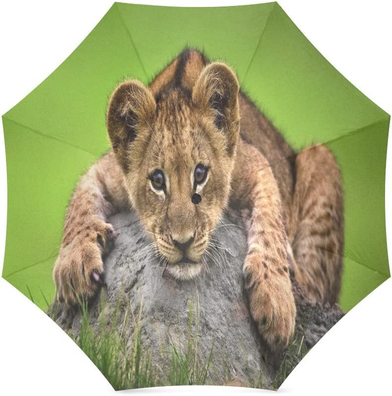 Custom Cute young lion Compact Travel Windproof Rainproof Foldable Umbrella