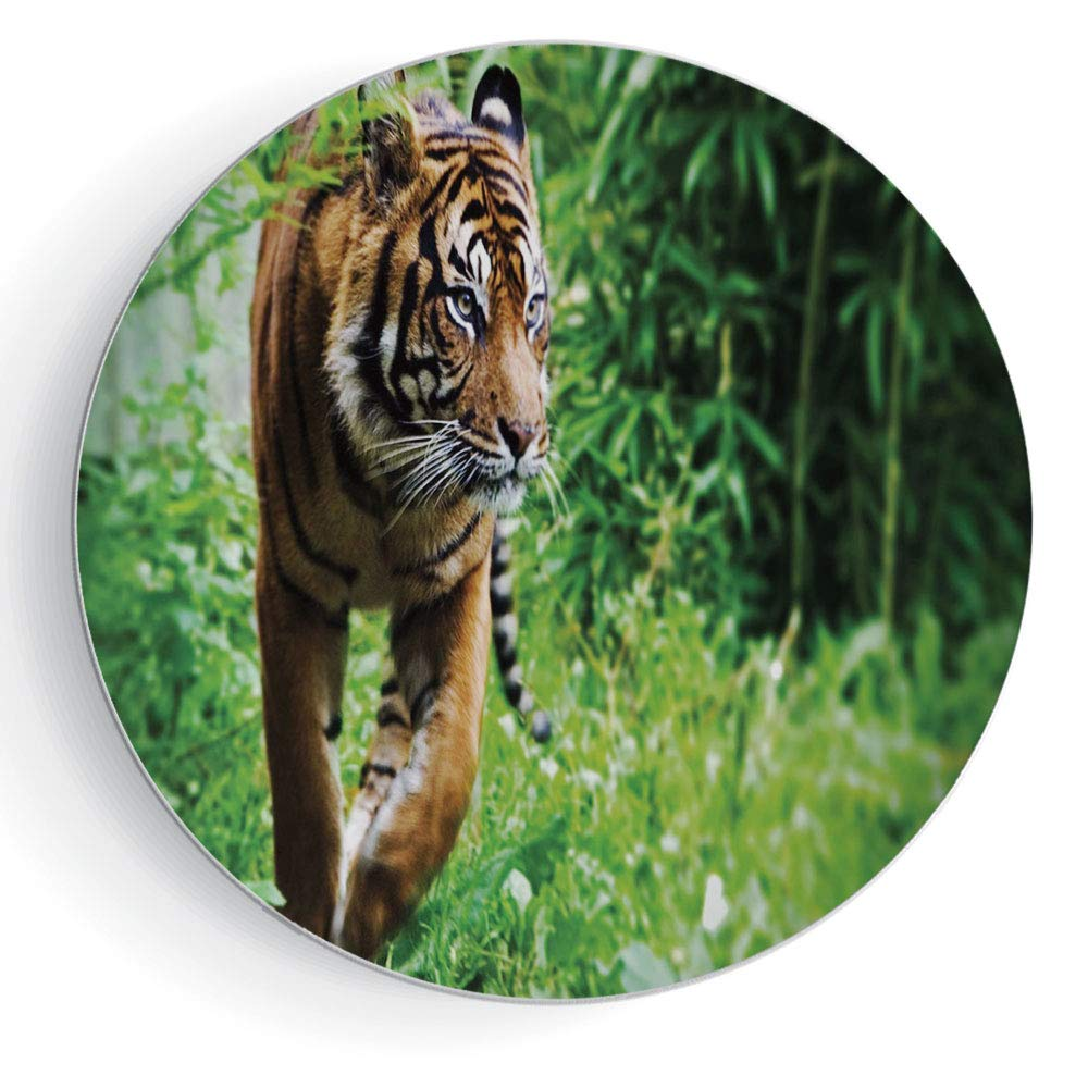 8'' Decorative Ceramic Plate Tiger with Plate Stand Siberian Large Feline at Zoo Wildlife at Captivity Unnatural Habitat Agressive Animal by iPrint