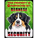 BERNESE MOUNTAIN DOG - PROPERTY PAWTECTED BY - FUNNY 9X12 HIGH QUALITY ALUMINUM PET DOG CAT SIGN PLAQUE - WILL NEVER RUST!