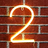 Neon Number Sign Wall Decorative Neon Lights Warm White Alphabet Letter Lights Night Lamp for House Bar Pub Hotel Beach Recreational, Kids Room, Living Room, Birthday Wedding Party Decor - 2 (Two)