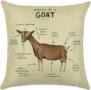 Xhonp Animal Anatomy Sketch Pillowcase Throw Pillow Cover for Home Decor Car Cushion 18 x 18 Inch (Goat)
