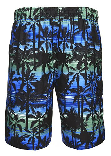 LAGUNA Mens California Palm Stripe Boardshort Swim Trunks Bathing Suits Blue Combo -