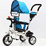 LovemyhomeDD Reverse Tricycle Bike Ride on Toys Stroller for Kids