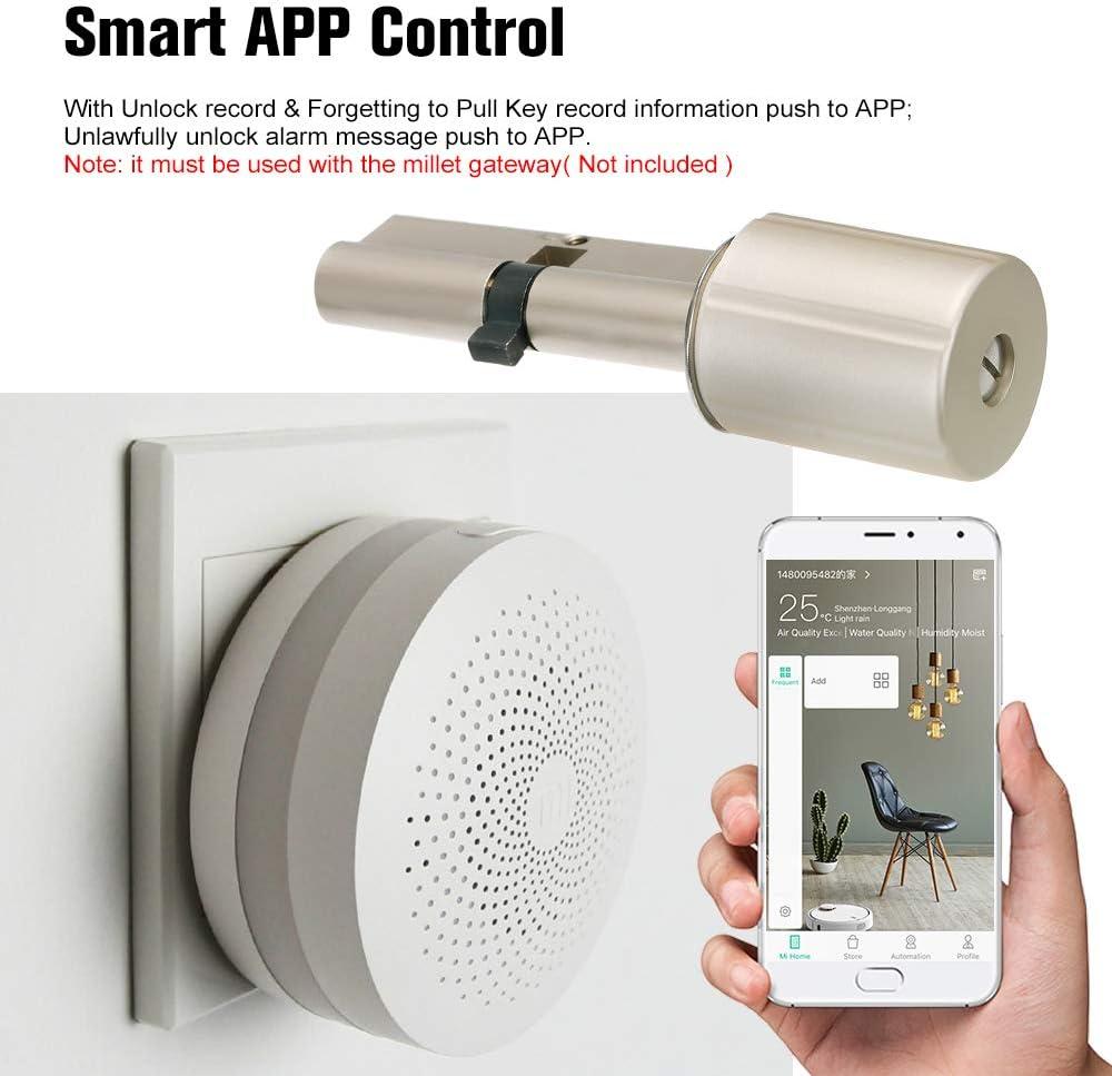 OWSOO Smart Door Lock,Sicurezza domestica serratura antifurto Core con chiavi Funziona con mi Home APP,Dispositivo antipanico,Allarme automatico