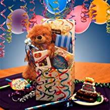 Happy Birthday Wishes! Gourmet Birthday Care Package with Teddy Bear