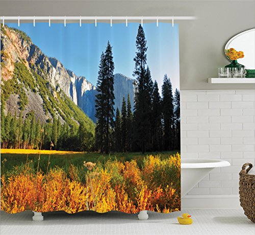 Apartment Decor Shower Curtain Set by Ambesonne, Bird