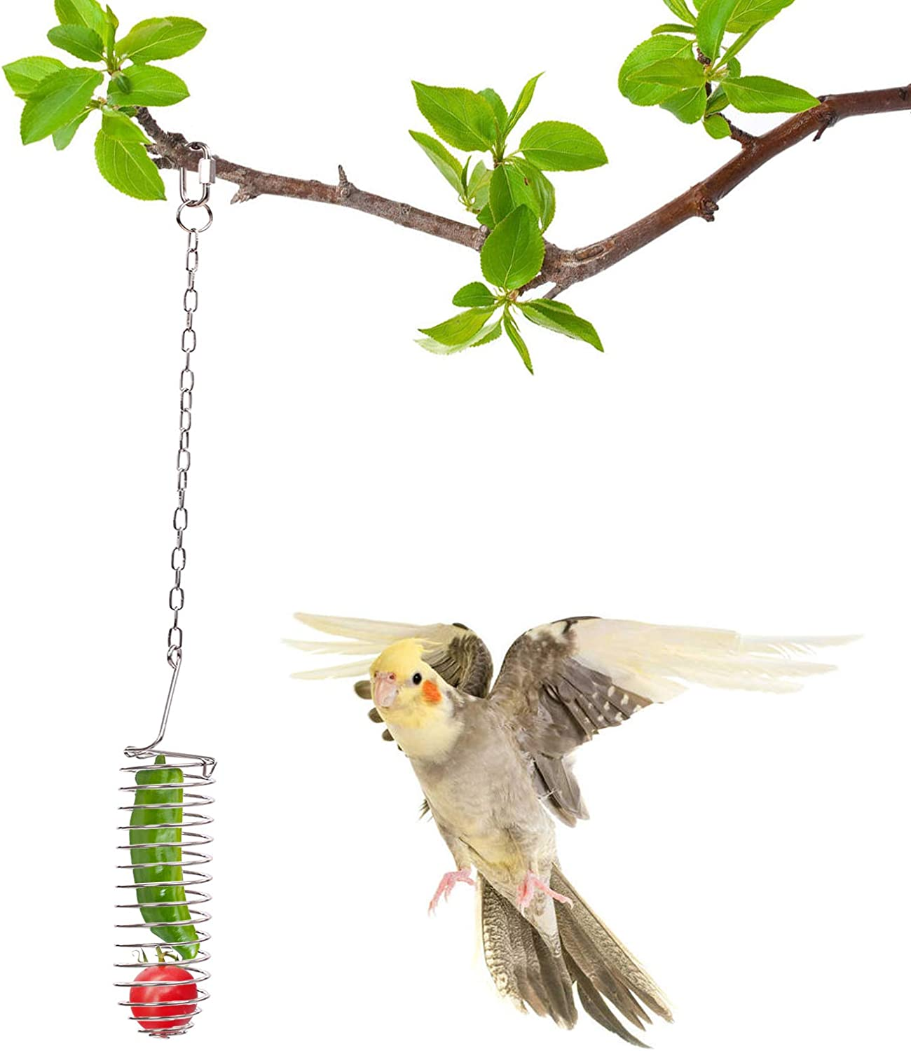 QBLEEV Bird Food Holder, Parrots Foraging Toys for Birdcage, Hanging Stainless Steel Bird Treat Feeders, Bird Food Basket for Fruit Vegetable Grain Wheat,Chew Toys for Conures Parakeets Cockatoos