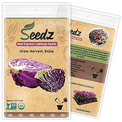 CERTIFIED ORGANIC SEEDS (Approx. 550) - Red Cabbage Seeds - Heirloom Cabbage Seeds - Non GMO, Non Hybrid - USA