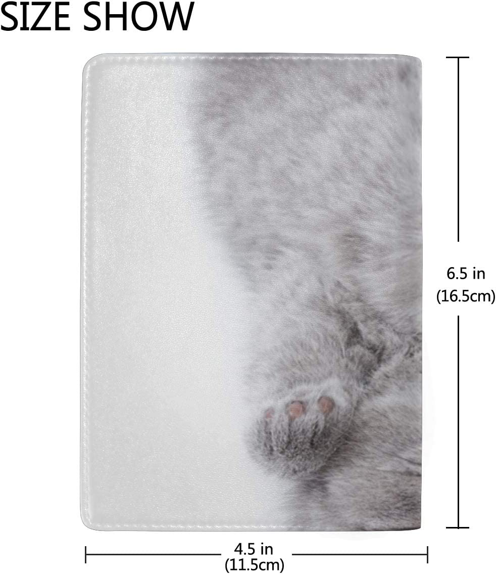 Cute Furry Grey Kitten Sleeps On A Pillow Blocking Print Passport Holder Cover Case Travel Luggage Passport Wallet Card Holder Made With Leather For Men Women Kids Family