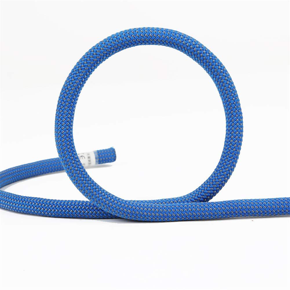 スタティックロープ、野外活動用の木登り用具、11mmヘビーデューティーマウンテン用具ロープ非常用火災安全編組ロープ,blue,30m 30m blue B07QZXD45C