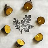 Floating Acorn Beeswax Candles ~ set of 6