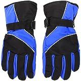 AlexVyan Warm Winter Riding Gloves -Black & Blue