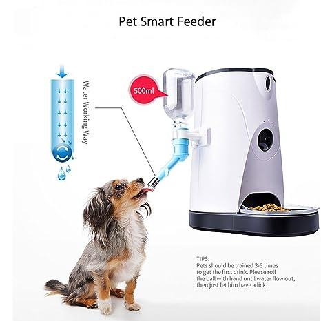 M3M Alimentador Automático De Mascotas Y Fuente De Bebida (Versión Mejorada) Control Inteligente Cámara