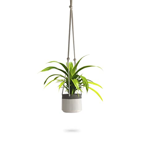 Review Ceramic Hanging Planter |