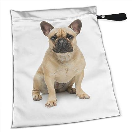 Amazoncom Wolong Yellow French Bulldog Brown Ears Sundries Bag