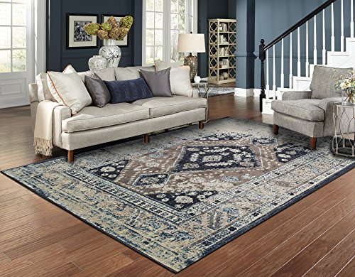 Amazon Com Distressed Area Rugs For Living Room 8x10