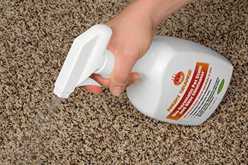 Angry Orange Best Enzyme Pet Odor Eliminator