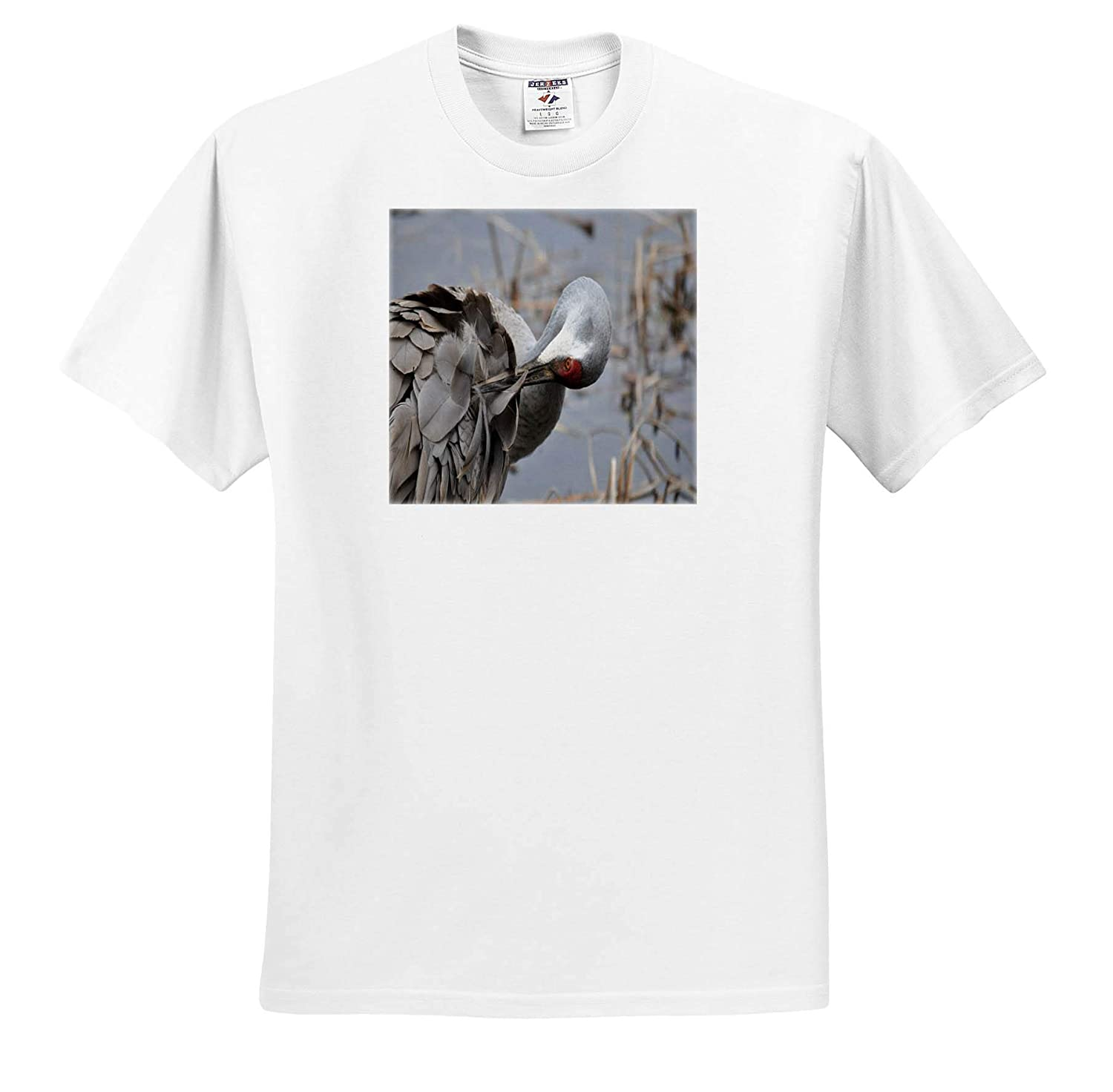 ts/_314295 3dRose Dreamscapes by Leslie Adult T-Shirt XL Birds Sandhill Crane Grooming his Feathers