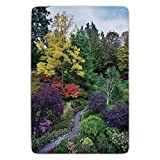 Bathroom Bath Rug Kitchen Floor Mat Carpet,Country Home Decor,Famous Masterpiece of Park Architecture Butchart Gardens Colorful Flowers Leaves Print,Flannel Microfiber Non-slip Soft Absorbent